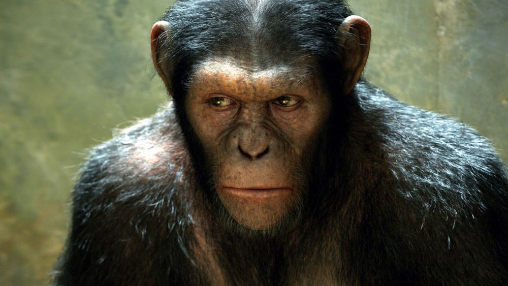 Rise of the Planet of the Apes (Watch this message)